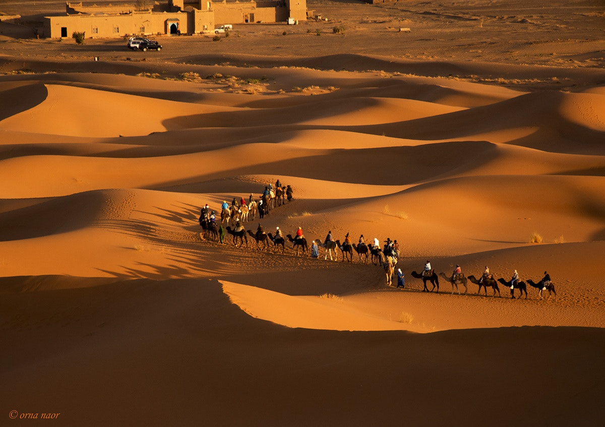 Photograph Sahara, Morocco by Orna Naor on 500px