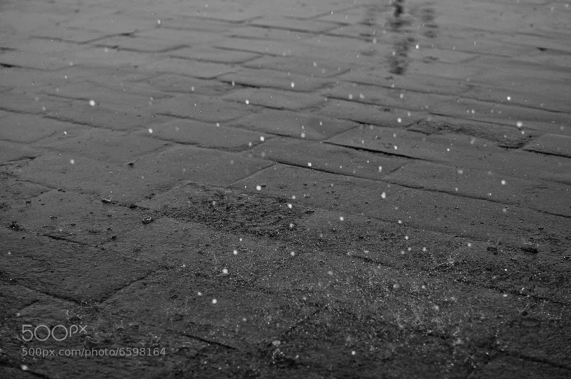 Photograph Rain by Raphaël  Melloul on 500px