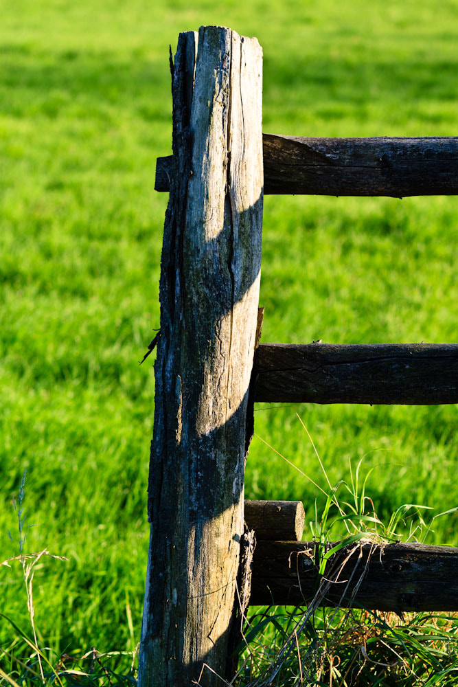 Photograph Fence (Zaun) by Marion Fanieng on 500px