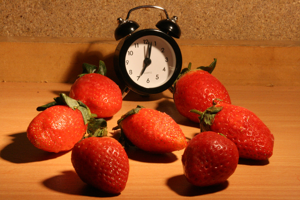 Photograph Rotting Strawberries HD - The Time Lapse Guys by The Time Lapse Guys on 500px