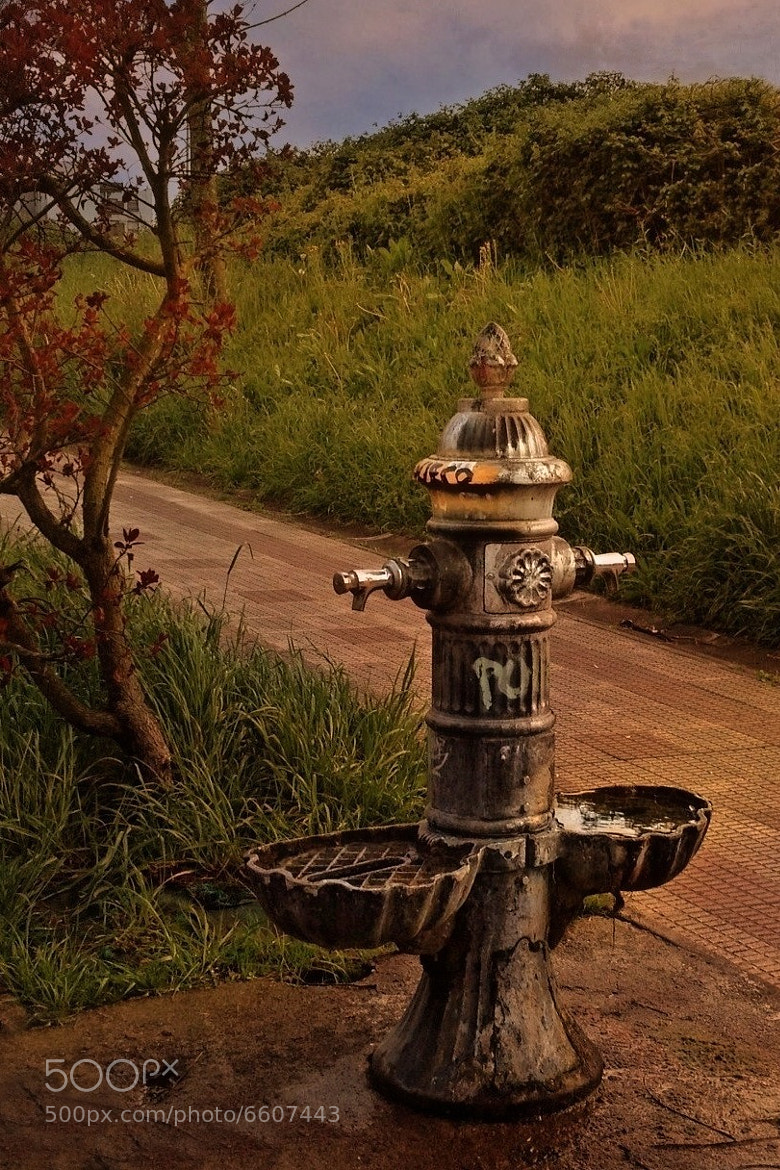 Photograph Fountain by Gustimbaldo Del Piero on 500px