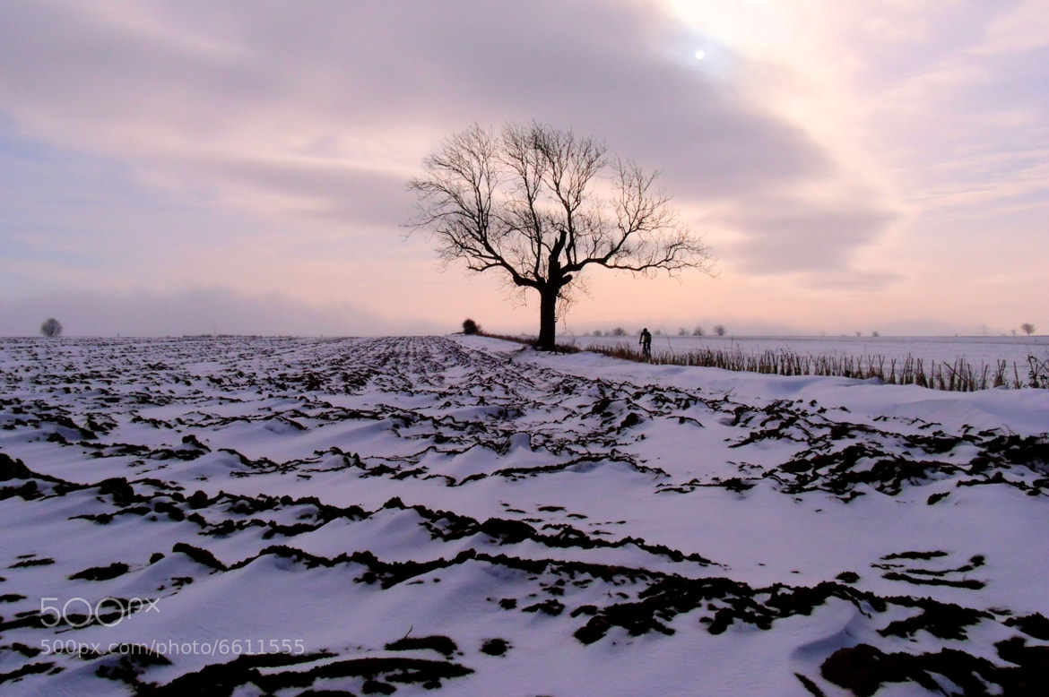 Photograph A Winter's Sunset by Sarah Couzens on 500px