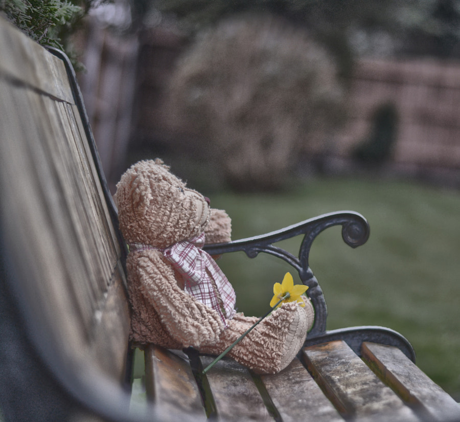 Still Waiting For My Love by Malc Lawes on 500px.com