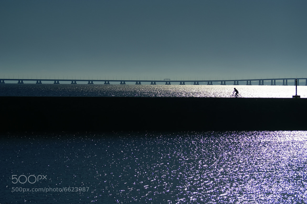 Photograph Walks by the sea of light. by joaocarlo   on 500px