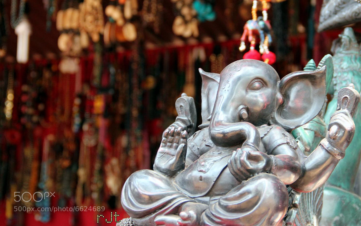 Photograph Ganesha by Rajat Toshniwal on 500px