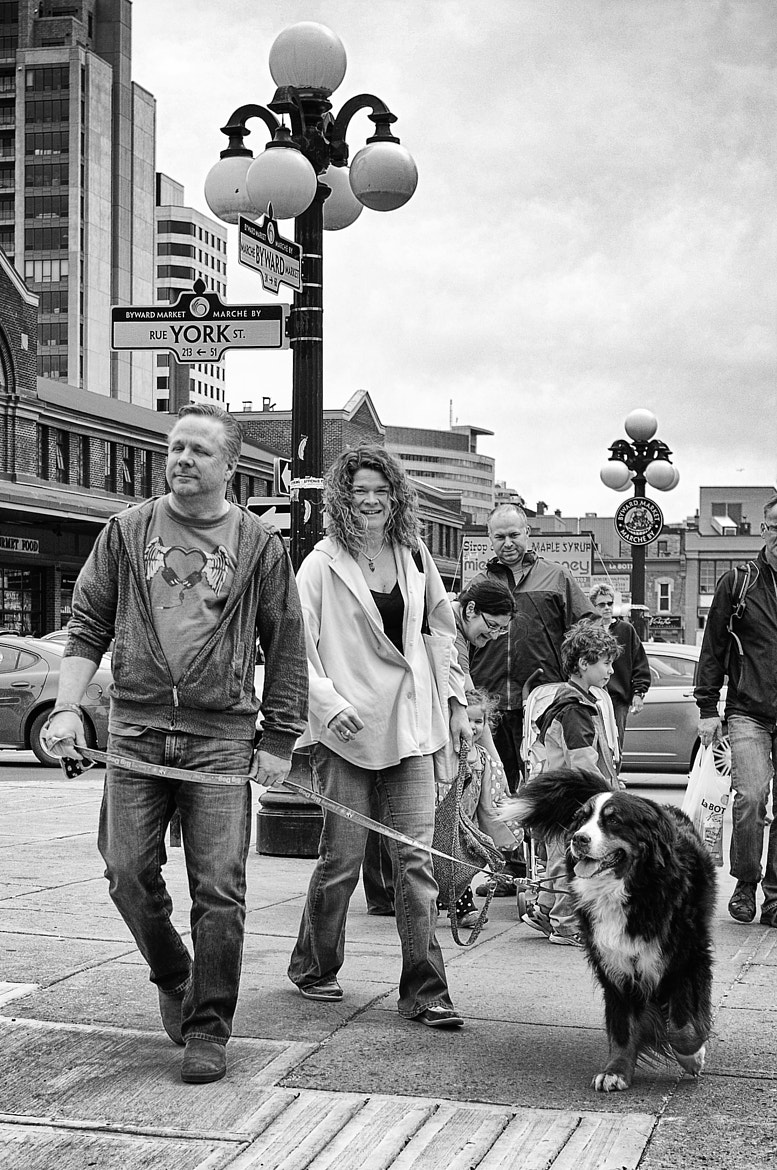 Photograph Walking The Dog by Philip Rice on 500px