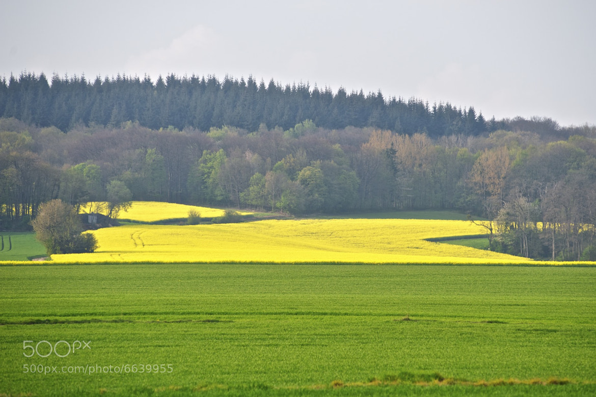 Photograph Yellow lava by Hubert Descamps on 500px