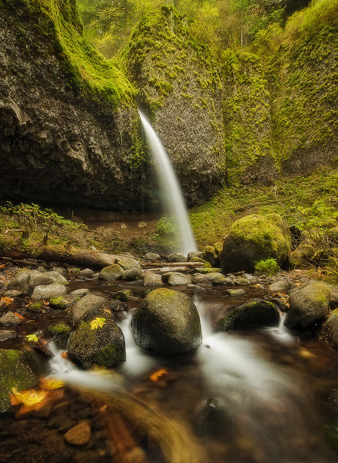 Photograph Enchanted Chamber by David Richter on 500px