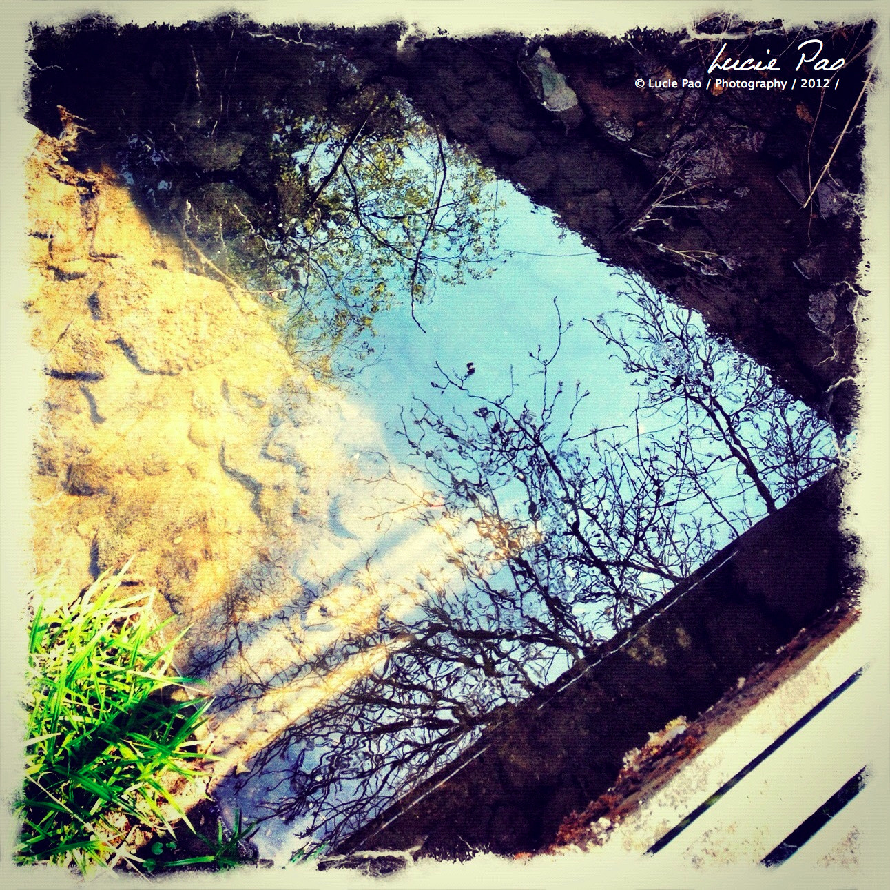 Photograph Reflets d'Eau by Lucie Pao on 500px