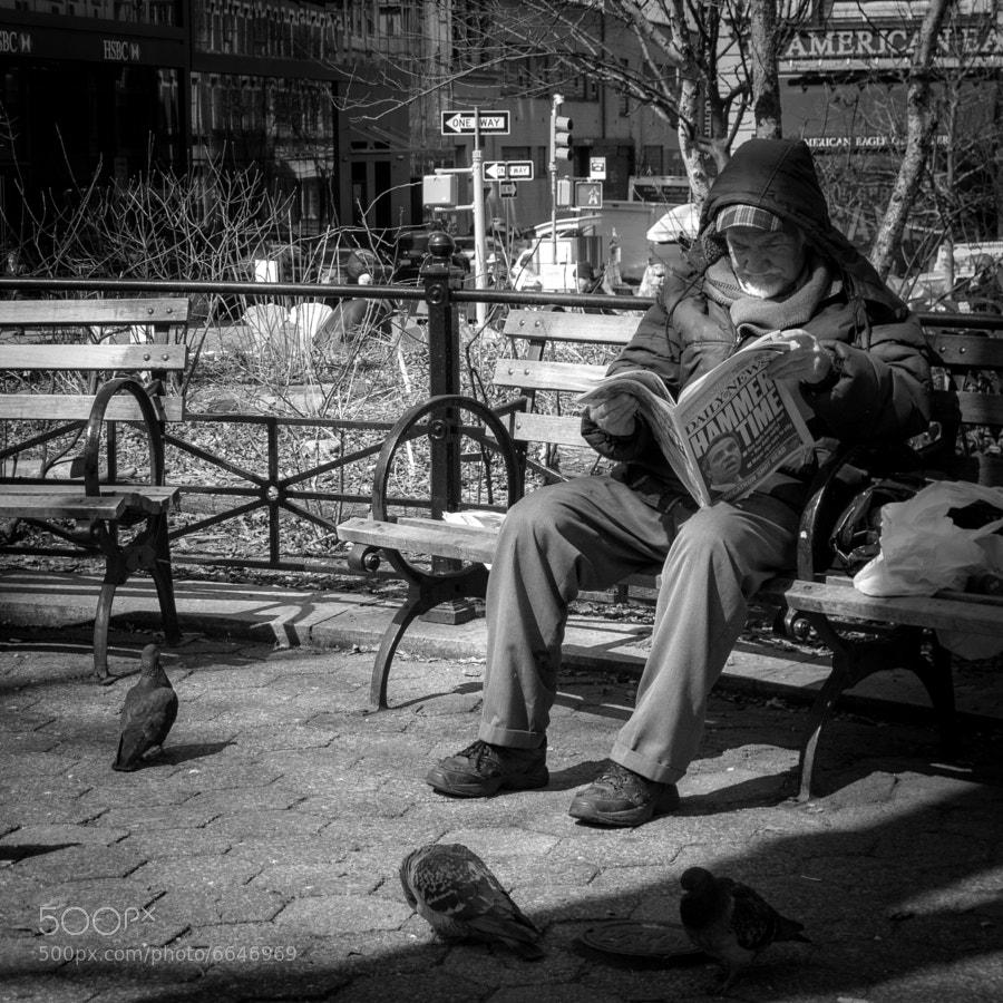 Reading newspaper in Union Square, Manhattan, NYC  © Vitaliano Vitali, all rights reserved