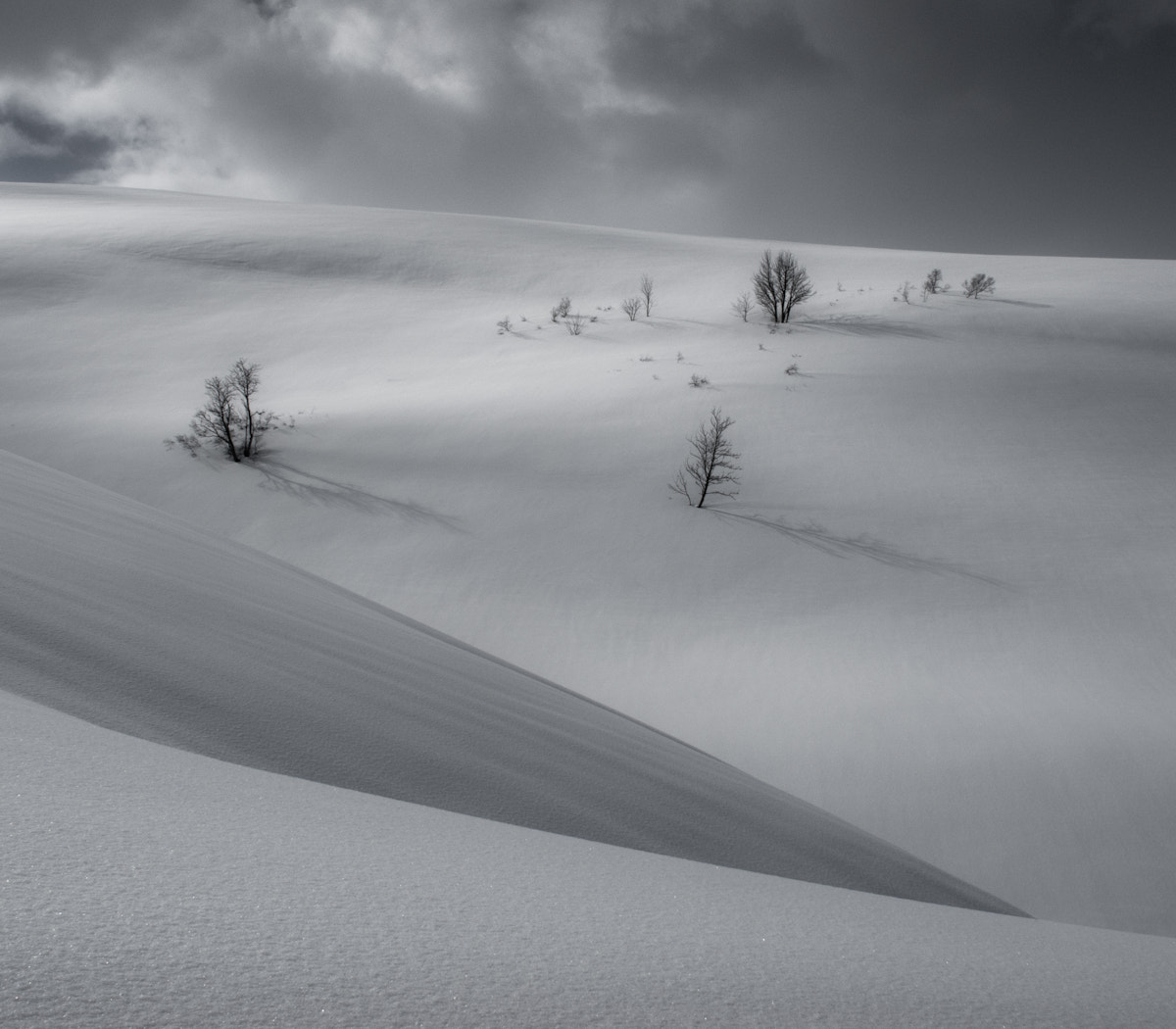 Photograph Snow by audun nygaard on 500px