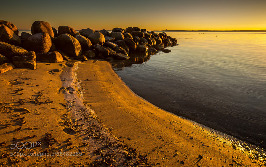 Photograph Golden Beach by Dirk Siemer on 500px