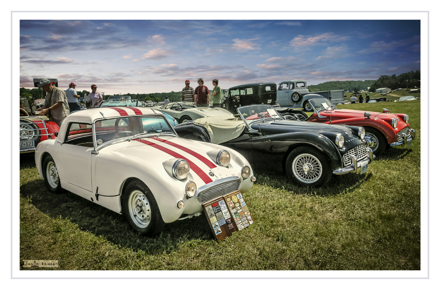 Little British Cars Field Of Dreams