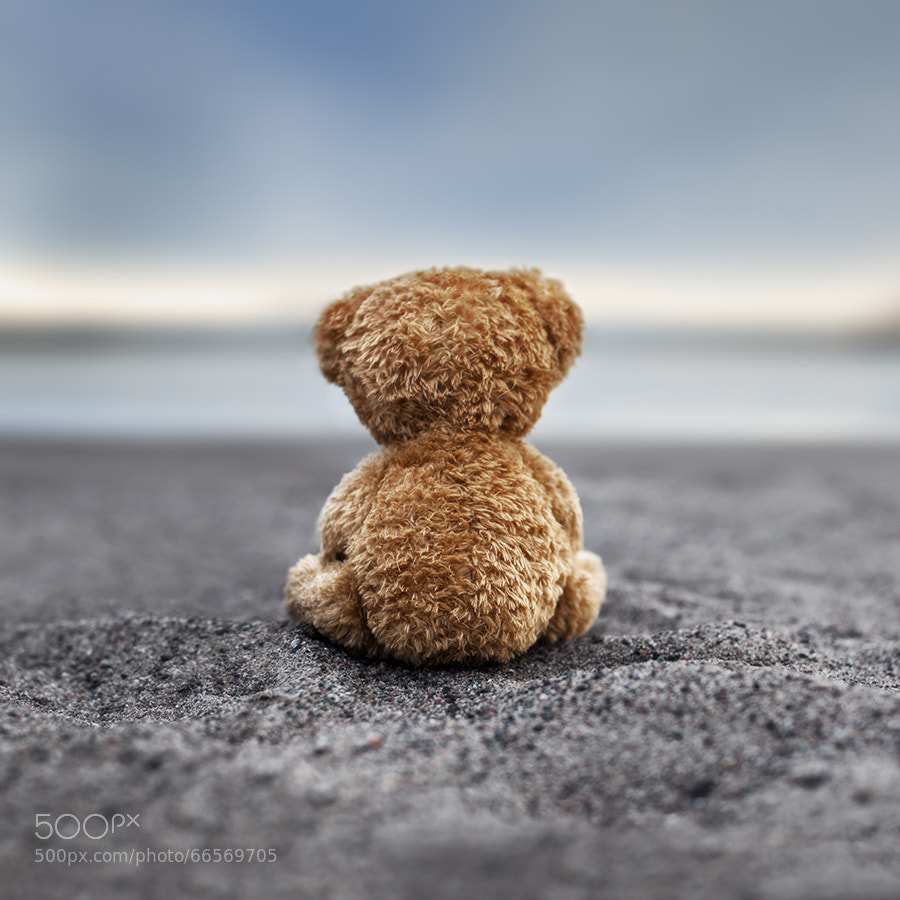 Photograph Teddy Blue by Marko Mastosaari on 500px