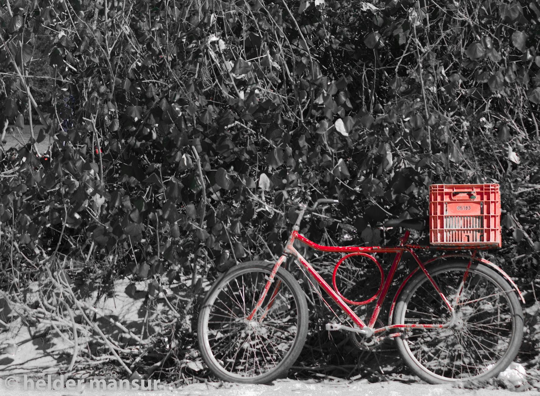 Photograph the red bike by helder mansur on 500px
