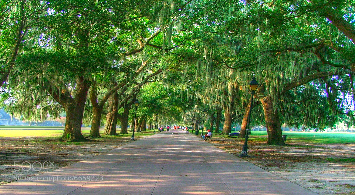 Photograph Oglethorpe Park by mac dunlap on 500px