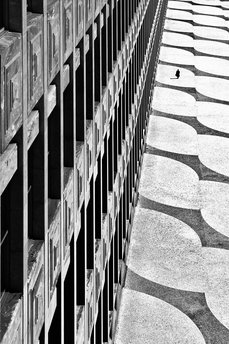 Photograph 20 Days Go By by Paulo Abrantes on 500px