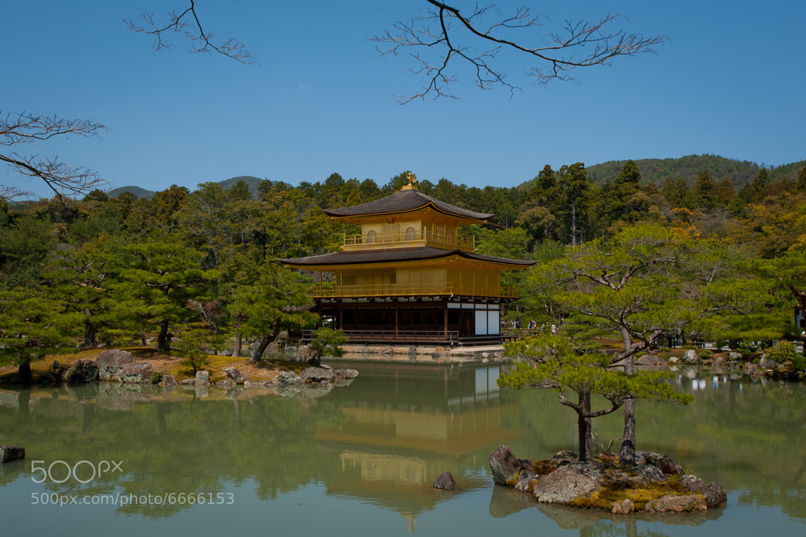 Photograph Kinkakuji The Golden Temple of Kyoto by Luca  Vaime on 500px