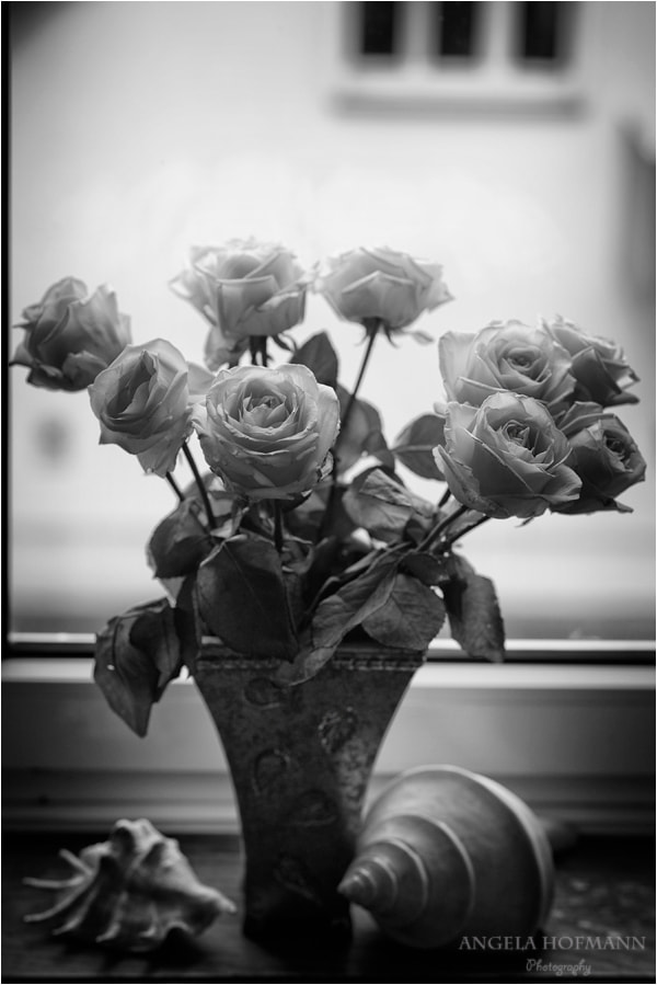 Photograph still life at the window by Angela Hofmann on 500px