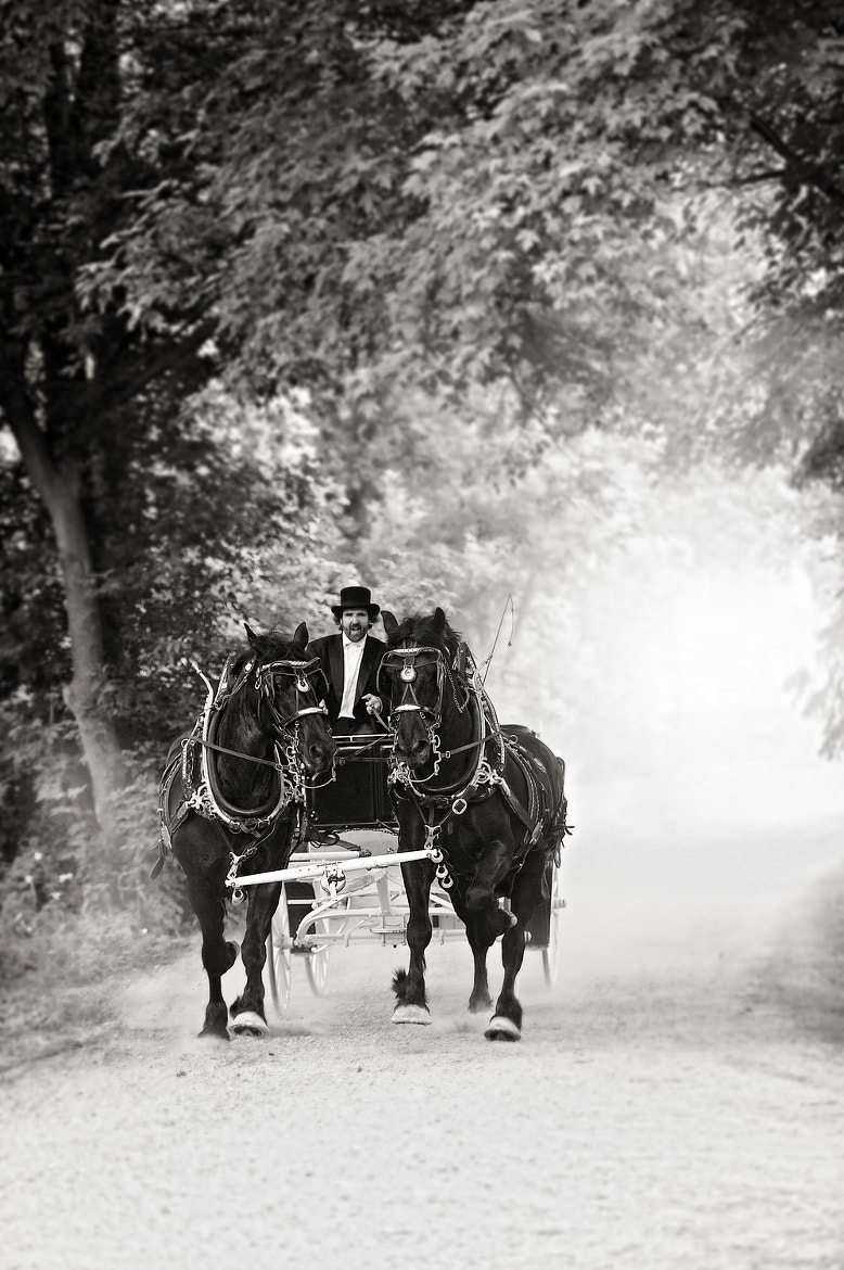 Photograph The Carriage  by Renaissance Studios on 500px