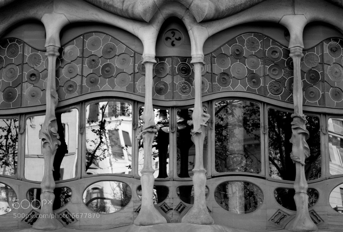 Photograph Casa Batlló by Carlos  Jaramillo Thomas on 500px