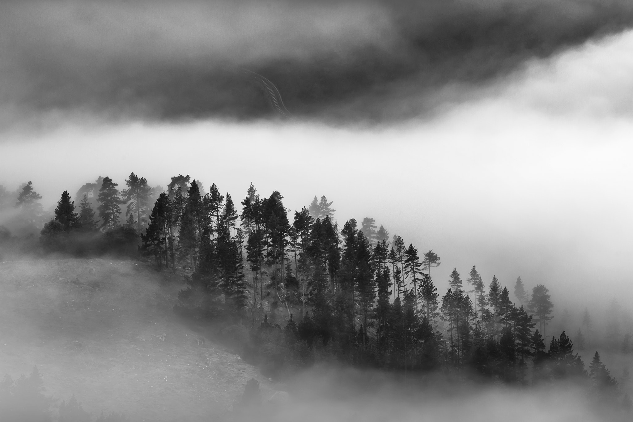 Photograph Fog Island by Ferran Vega on 500px