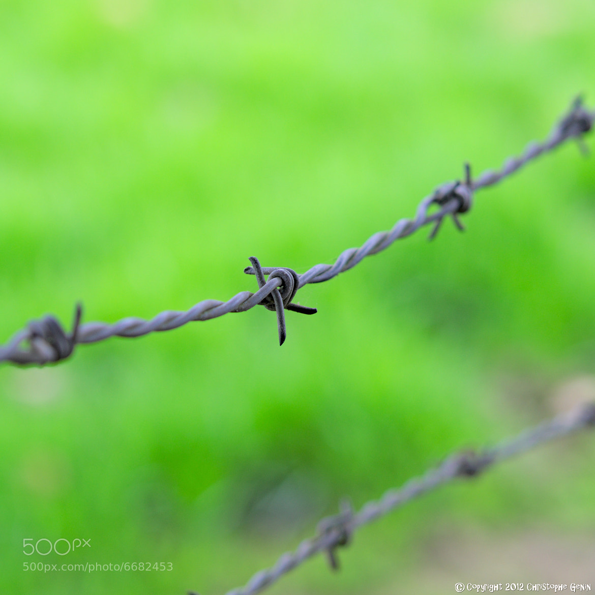 Photograph green fence :) by christophe genin on 500px