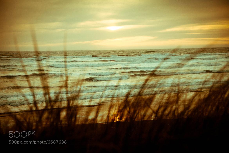 Photograph Sunset at Ocean Beach. by Tori Lesikar on 500px