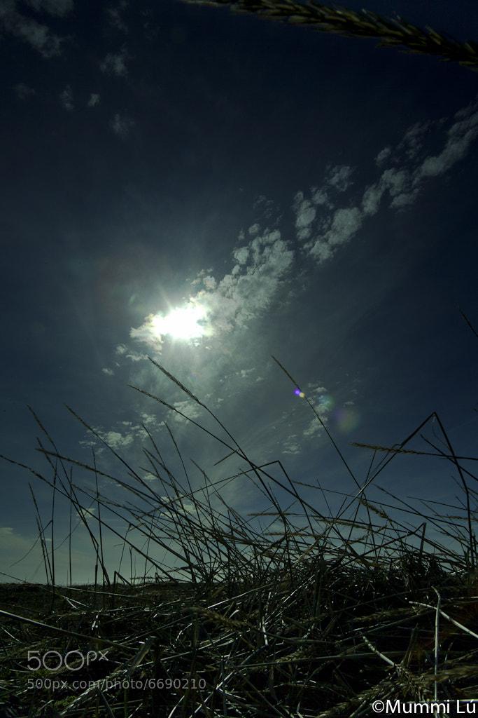 Photograph Untitled by Mummi Lu on 500px