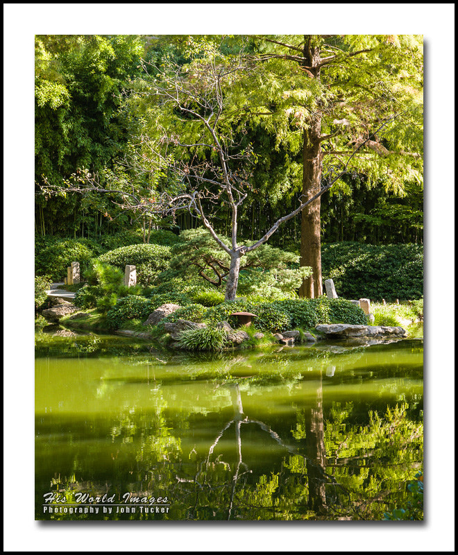 Photograph Reflections by John Tucker on 500px