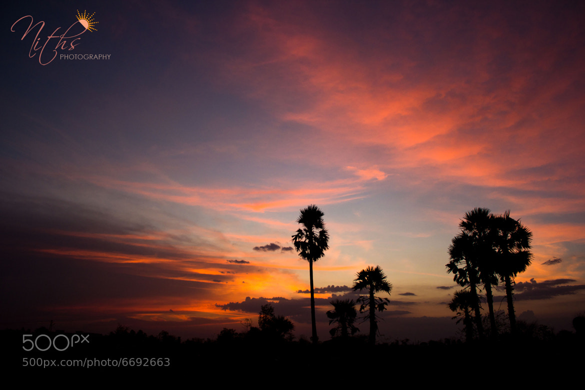 Photograph Hues of Dusk -I by Nithya Radhakrishnan on 500px