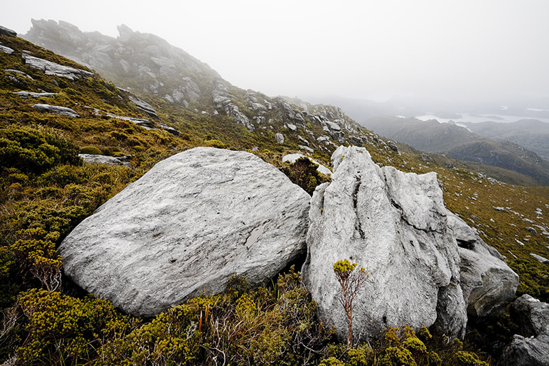 Photograph Misty South-West Tasmania by Michael Gay on 500px