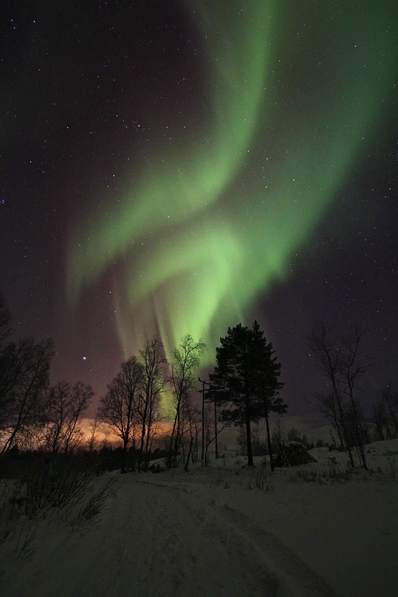 Photograph Aurora Borealis by Daniel Sakariassen on 500px