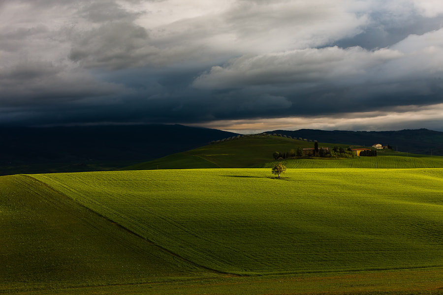 Photograph Tuscan green Fields by Hans Kruse on 500px
