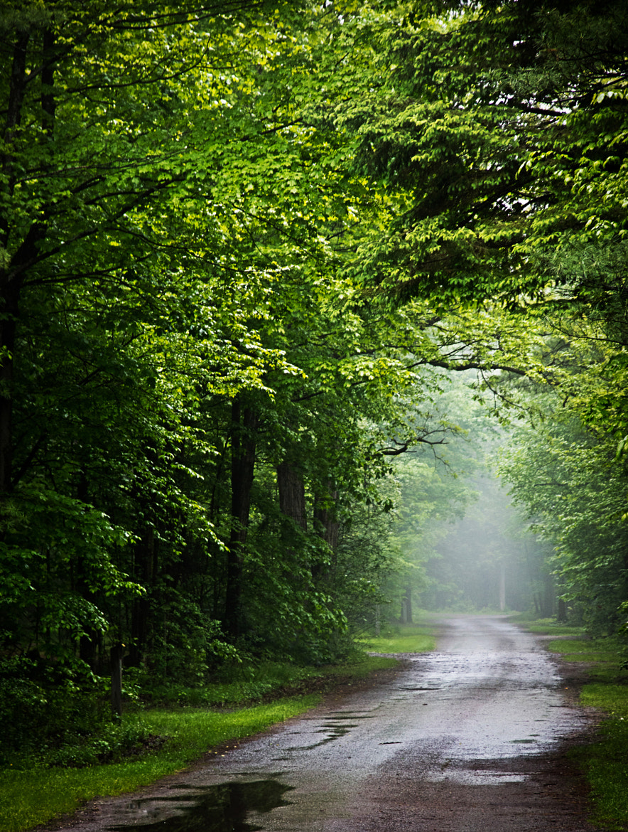 Photograph Road Less Travelled by Bruce Clement on 500px