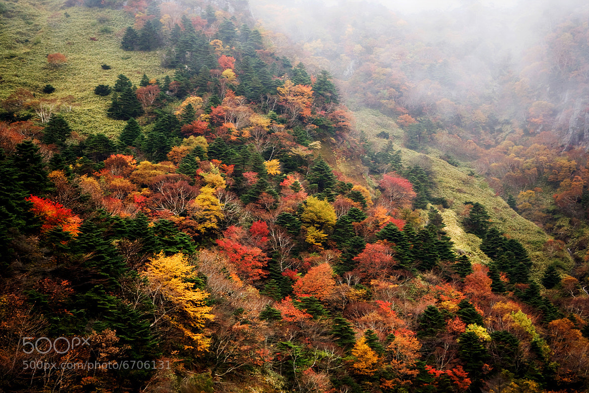 Photograph Autumn of Halla Mountain by Youngjae Lee on 500px
