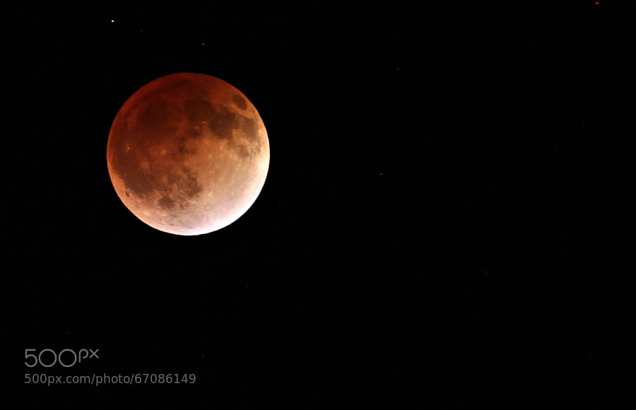 Photograph Bloodmoon Near Peak of the Eclipse by Brian LaFrance on 500px