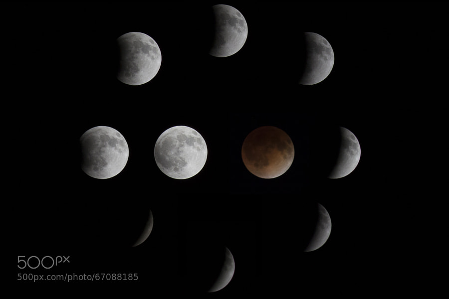 Photograph Blood Moon Progression by Justin Ehlert on 500px