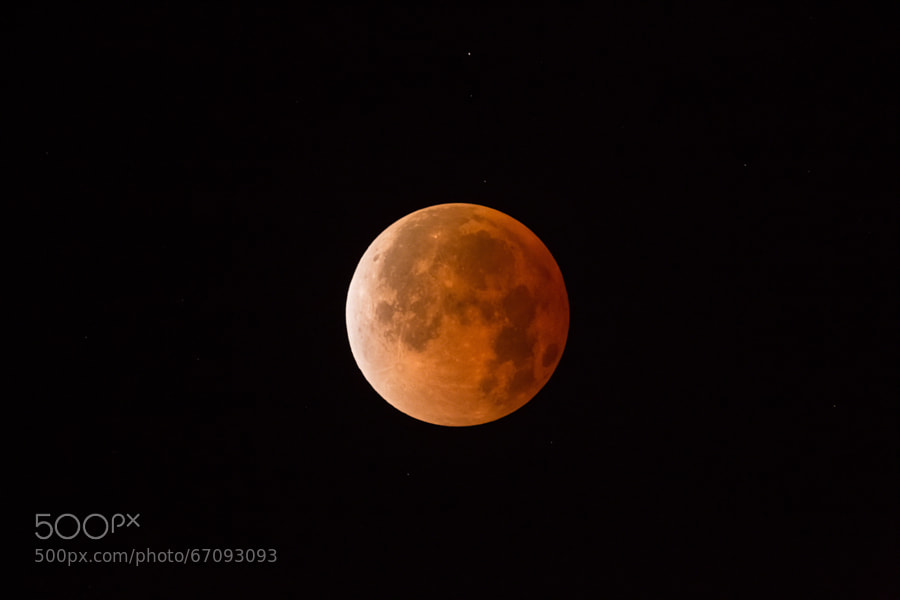 Photograph Blood Moon - Total Lunar Eclipse - April 15 2014 by Hector Vilorio on 500px
