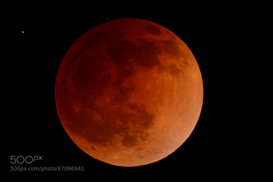Photograph Bloody Moon - Eclipse de luna roja by Jesús Castro on 500px