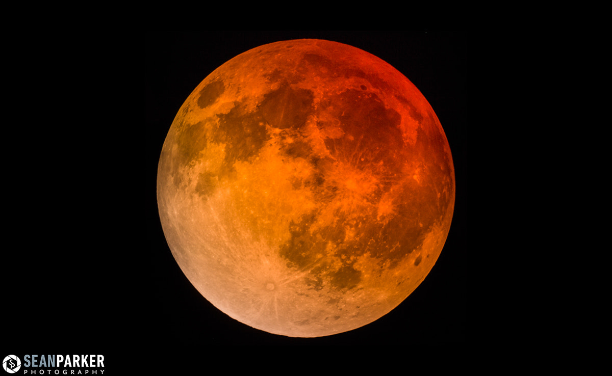 Photograph Blood Moon 2014 by Sean Parker on 500px