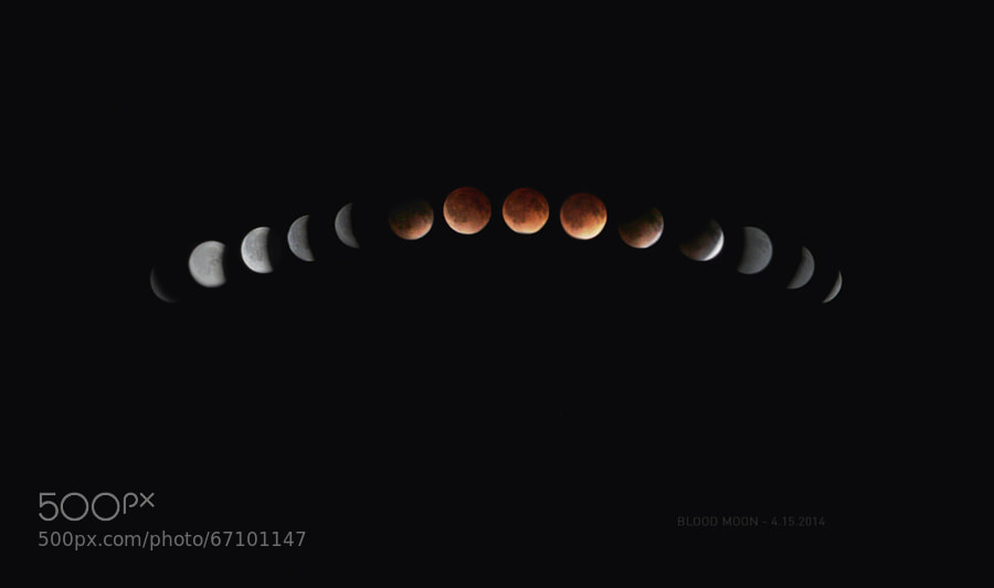 Photograph Total Lunar Eclipse & Blood Moon Sequence by Lane Lehman on 500px
