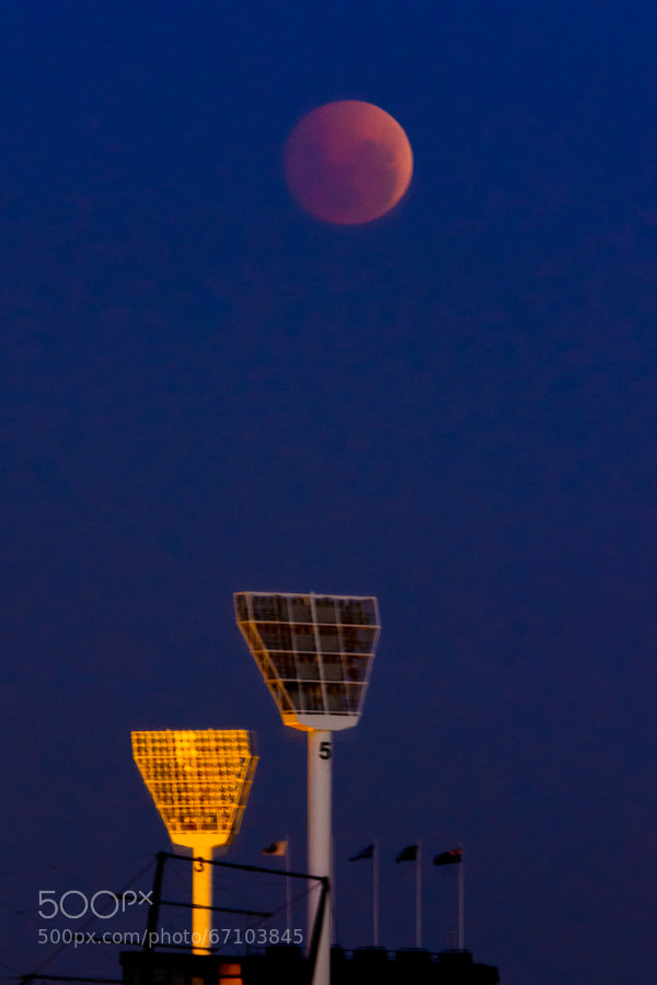 Photograph Red Moon Rising over the MCG by Wolf Cocklin on 500px