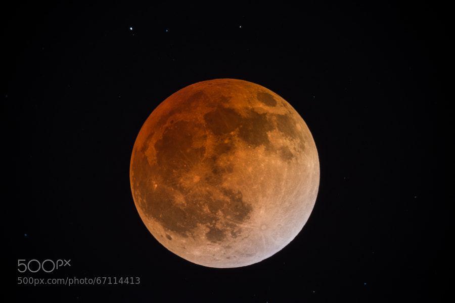 Photograph Blood Moon Over California by T Dingle on 500px
