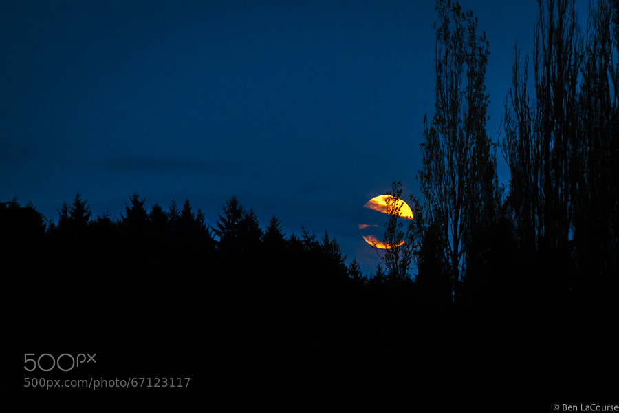 "Photograph ""Blood Moon"" by Ben   on 500px"