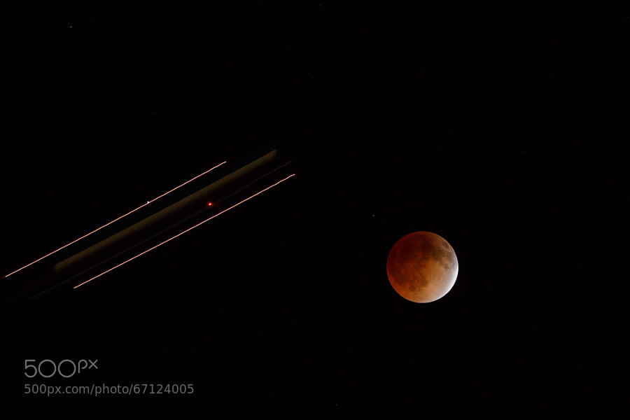 Photograph Blood Moon by Leon DeSimone on 500px