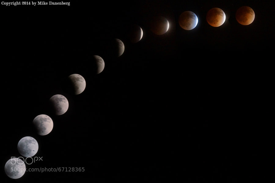 Photograph Blood Moon Eclipse by Mike Danenberg on 500px