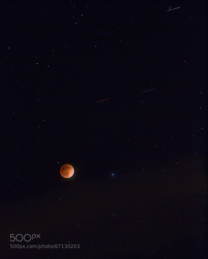Photograph Lunar Eclipse - 2014 by Peter Mayo on 500px