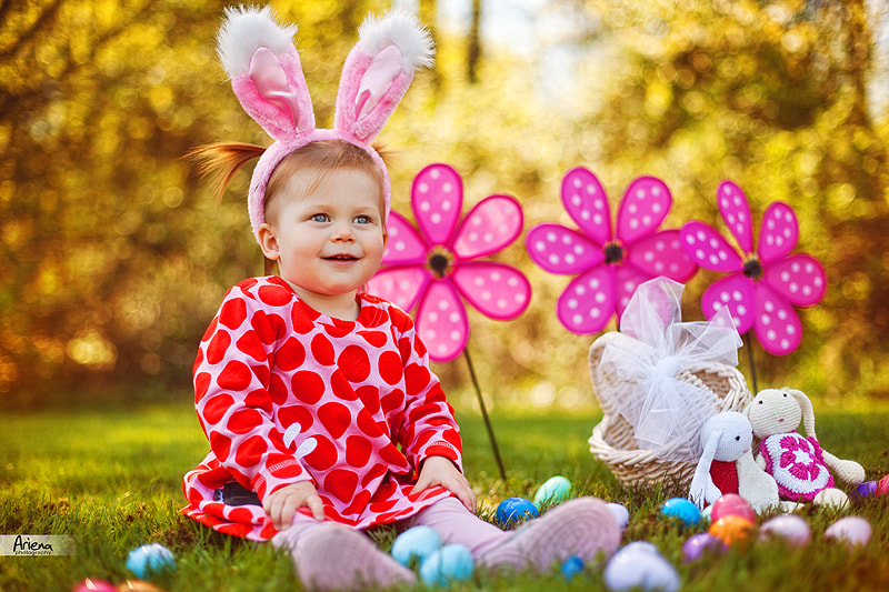 Photograph Easter bunny by Ellen Synenko on 500px