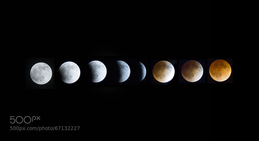 Photograph Blood Moon progression by Michael Pettingill on 500px